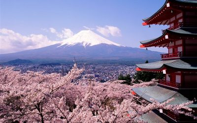 Các bước du học Nhật