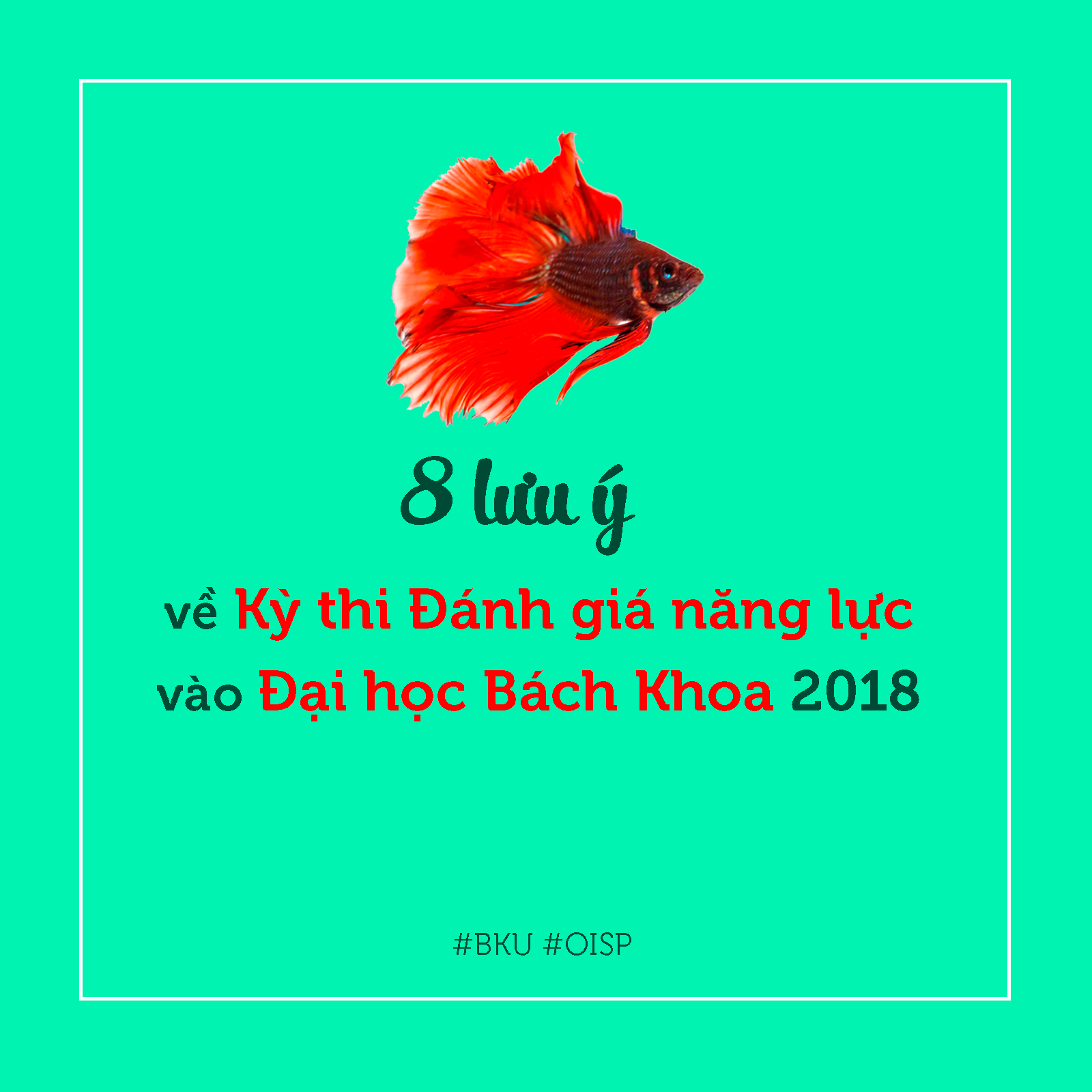 8 luu y ve Ky thi Danh gia nang luc 2018 01