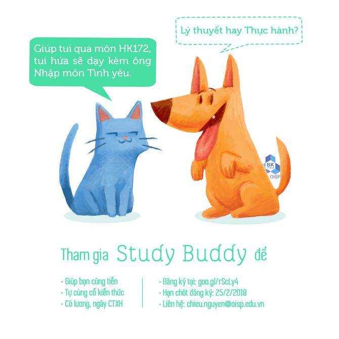 Study Buddy HK172