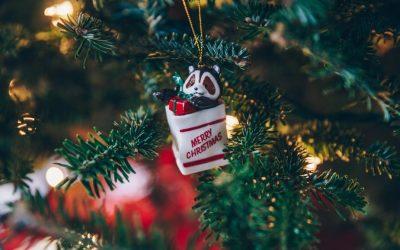 Giáng sinh, làm gì cho xôm?