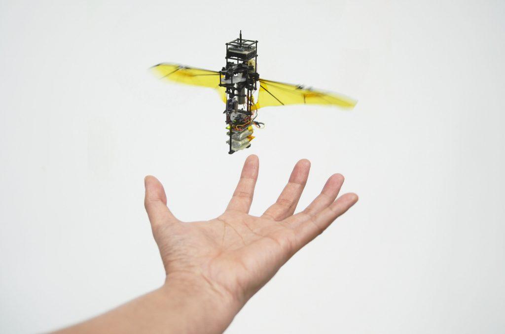 Robot bọ bay có thể phục hồi cánh sau va chạm | Trường Đại học Bách khoa | Kỹ thuật Hàng không